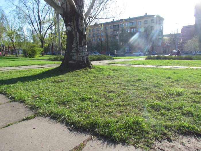 В Мариуполе  «дело вытоптанных газонов» прекращено (ФОТО, документ), фото-6