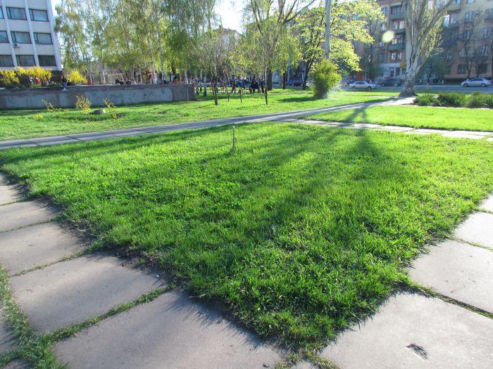 В Мариуполе  «дело вытоптанных газонов» прекращено (ФОТО, документ), фото-4