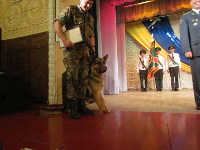 В Мариуполе стражи кордона получили в подарок «море», машины, снегоходы и  квадроциклы (ФОТО), фото-11