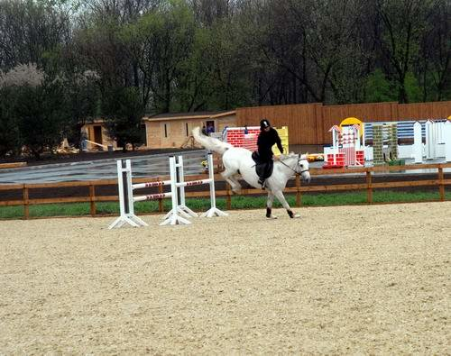 В Донецке пройдут международные соревнования по конному спорту (ФОТО), фото-2