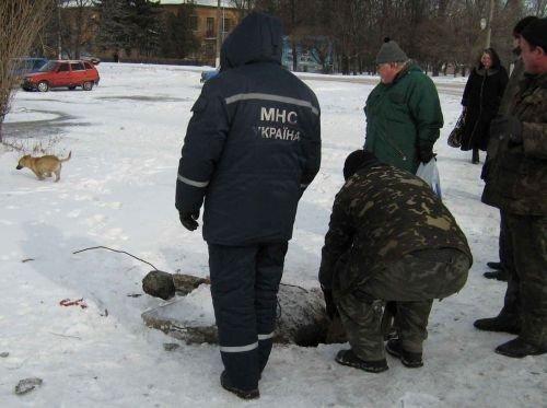 Куйбышевские спасатели помогли собаке (ФОТО), фото-1