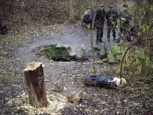 В запорожском заповеднике восстановят изрубленные вандалами деревянные статуи (ФОТО), фото-1