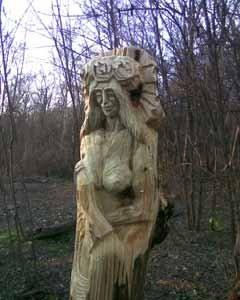 В запорожском заповеднике восстановят изрубленные вандалами деревянные статуи (ФОТО), фото-3