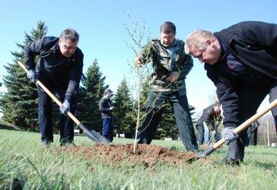 Руководители Луганщины обсуждали дела областные за посадкой деревьев, фото-2