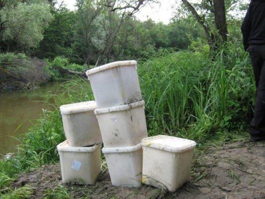 Ростовчанин пытался незаконно вывезти из Луганщины 180 кг. меда, фото-1