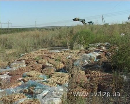 Ветеринарная милиция обнаружила в лесополосе  под Запорожьем 15 тонн мясного фарша! (ФОТО), фото-2