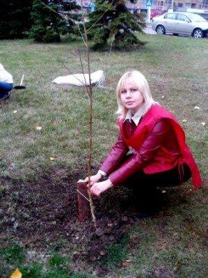СК «Провідна» подарила горловчанам березовую аллею, фото-2