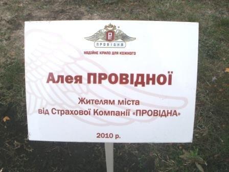 СК «Провідна» подарила горловчанам березовую аллею, фото-1