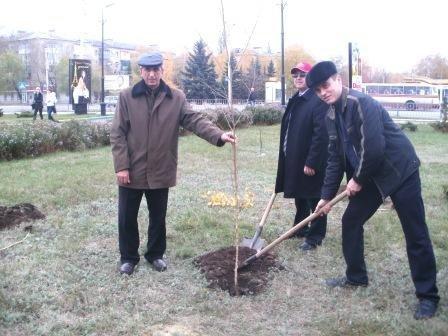 СК «Провідна» подарила горловчанам березовую аллею, фото-3