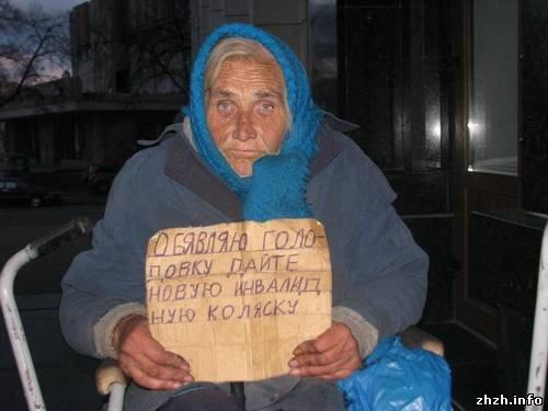 В Житомире у стен облгосадминистрации пенсионерка вновь объявила голодовку (ФОТО), фото-1