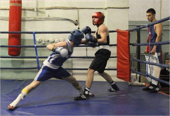Стартовал Открытый чемпионат Севастополя по боксу(ФОТО), фото-2