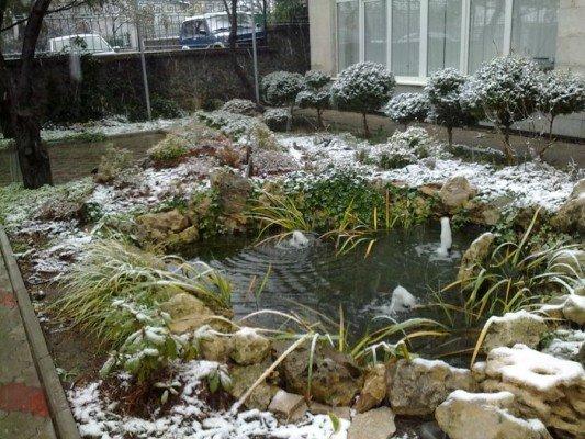 Сегодня в Симферополе выпал первый снег(ФОТОФАКТ), фото-2