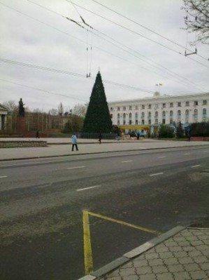 В Симферополе наряжают главную  елку Крыма (ФОТОФАКТ), фото-1
