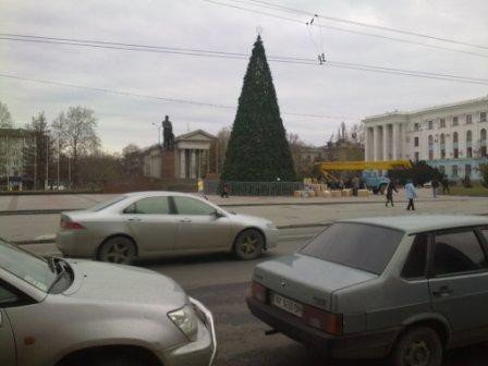 В Симферополе наряжают главную  елку Крыма (ФОТОФАКТ), фото-2