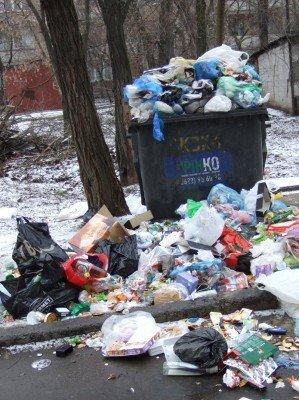Донецк за новогодние праздники превратился в город миллиона свалок (фото), фото-1