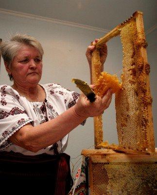 В Донецке хотят провести Всемирную пчелиную олимпиаду со специально приглашенной пчеловодческой звездой — Виктором Ющенко (фото), фото-2