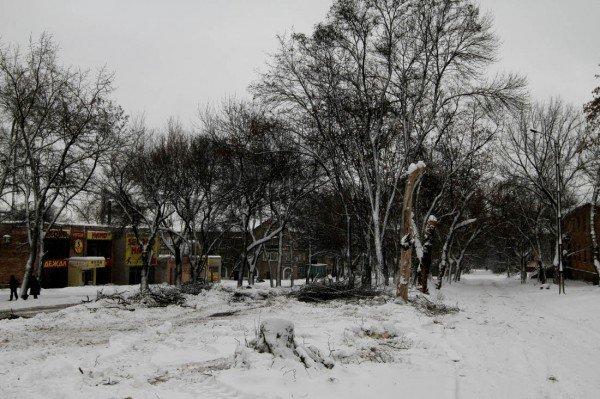 В Донецке начали строительство новой дороги под «Евро-2012» (фото), фото-2