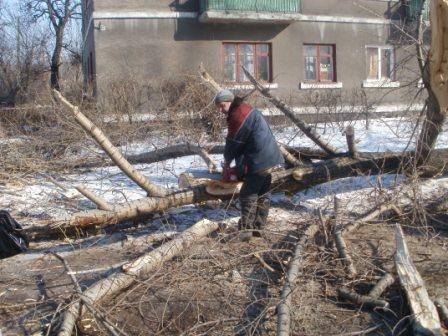 В Никитовском районе спилили деревья, которые угрожали жилым домам, фото-1
