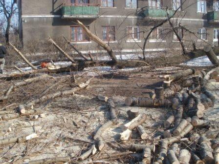 В Никитовском районе спилили деревья, которые угрожали жилым домам, фото-2