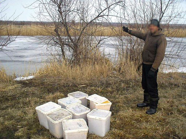 Луганские пограничники пресекли контрабанду меда (фото), фото-1