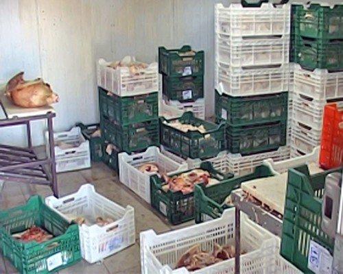 292 кг свинины и 2 тонны курятины конфисковали оперативники в подпольном цеху Луганска (фото), фото-1