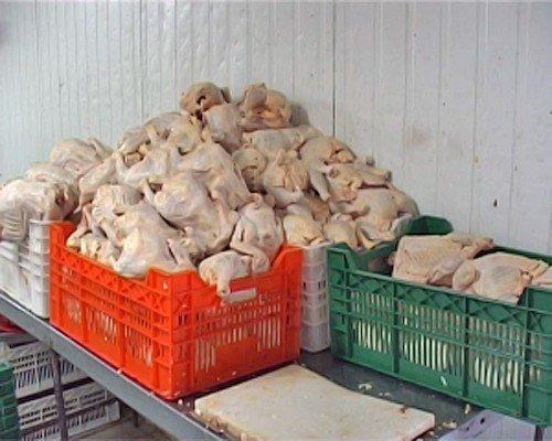 292 кг свинины и 2 тонны курятины конфисковали оперативники в подпольном цеху Луганска (фото), фото-3