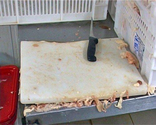 292 кг свинины и 2 тонны курятины конфисковали оперативники в подпольном цеху Луганска (фото), фото-5