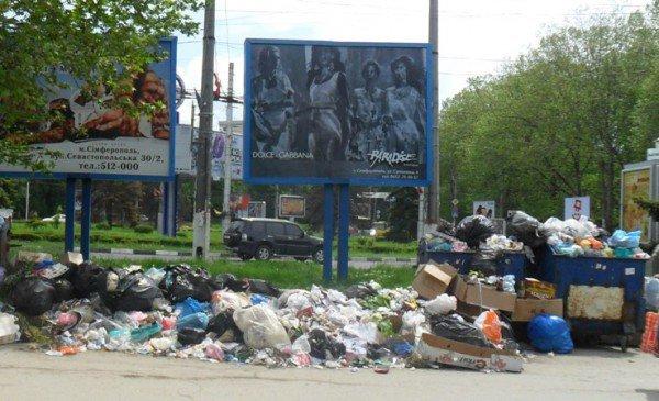 В Симферополе могут создать экологическую полицию (фото), фото-2
