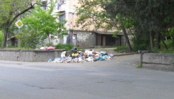В Симферополе могут создать экологическую полицию (фото), фото-3