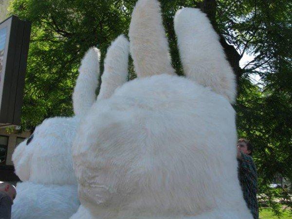 Огромный кролик из метро вновь появился в центре Харькова, но уже с подругой (ФОТО), фото-1
