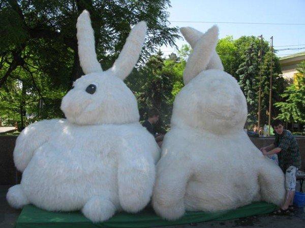 Огромный кролик из метро вновь появился в центре Харькова, но уже с подругой (ФОТО), фото-2