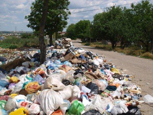 Мэр Симферополя позировал фотографам на фоне мусорных куч (фото), фото-2