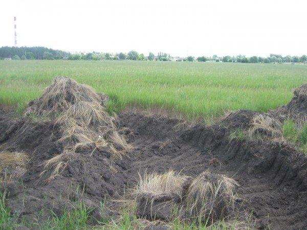 Ноу-хау харківських ділків: крадуть чорнозем, фото-1