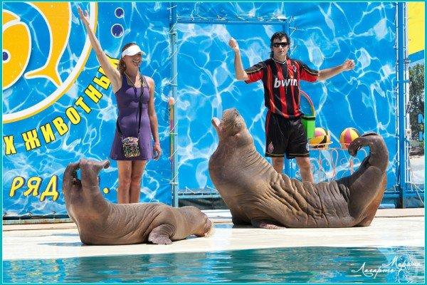 Морские Олимпийские Игры - открыты!, фото-9