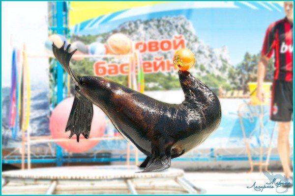 Морские Олимпийские Игры - открыты!, фото-7