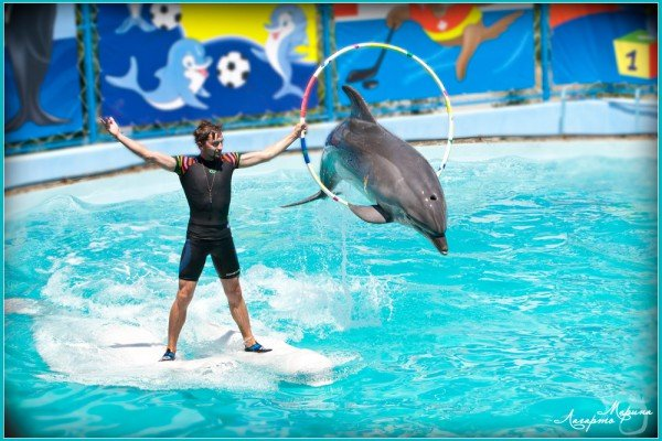 Морские Олимпийские Игры - открыты!, фото-1