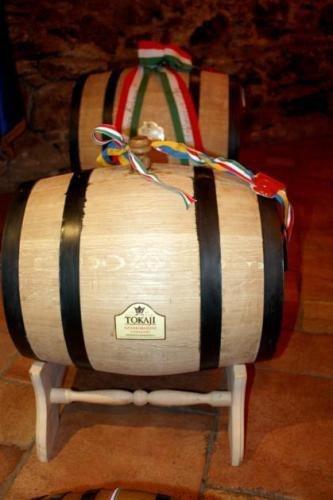 В Ужгороді угорці подарували Януковичу 60-літрову бочку токайського вина (ФОТО), фото-1