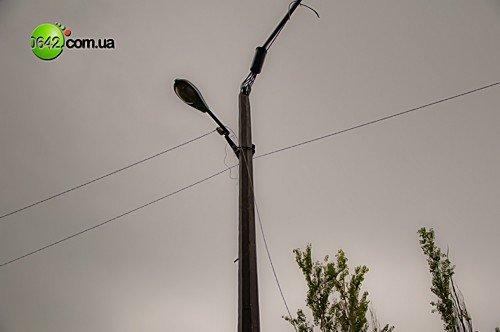 В Луганске в квартале Волкова упали 2 дерева (фото), фото-5