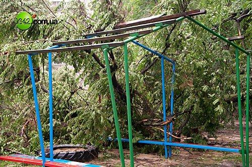 В Луганске в квартале Волкова упали 2 дерева (фото), фото-3