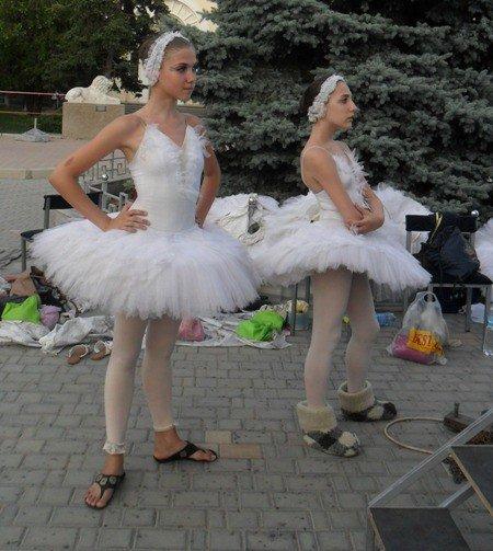 В центре Евпатории танцевали лебеди (фото), фото-4