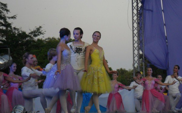 В центре Евпатории танцевали лебеди (фото), фото-7