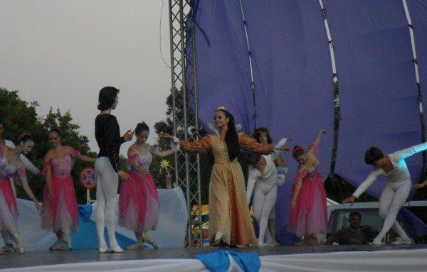 В центре Евпатории танцевали лебеди (фото), фото-8