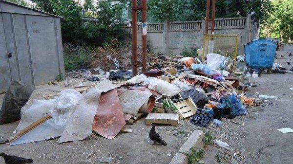 Продолжение мусорной проблемы в Симферополе (фото), фото-2