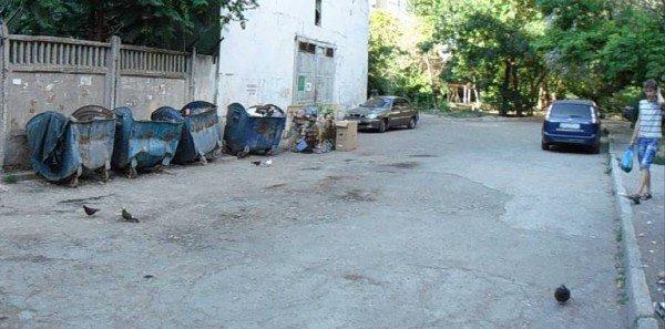 Продолжение мусорной проблемы в Симферополе (фото), фото-3