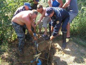 В Одесской области МЧСники спасали корову (фото), фото-2