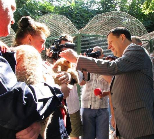 Мэр Одессы Алексей Костусев побывал в гостях у новорожденных львят(фото), фото-2
