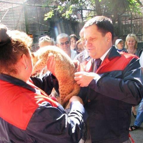 Мэр Одессы Алексей Костусев побывал в гостях у новорожденных львят(фото), фото-3