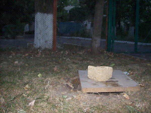В канун 1 сентября в Одессе стала валиться школа! (фото), фото-4