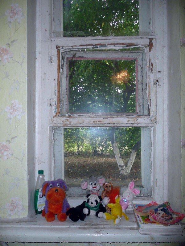 «Регионалы» прикупили оборудования для социального общежития «Оберег», фото-4