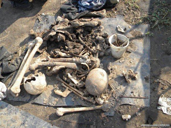 На Луганщине нашли останки немецких солдат (ФОТО), фото-2